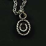 Framed Horseshoe Necklace