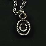 Framed Horseshoe Necklace